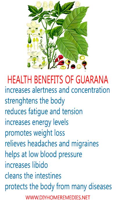 Health benefits of guarana - www.diyhomeremedies.net